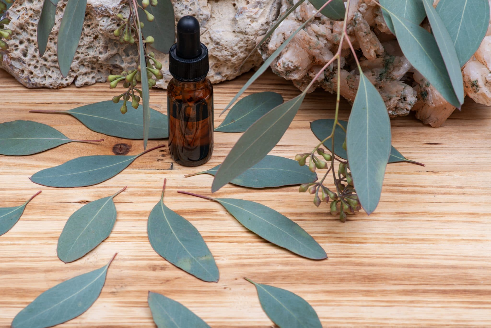 Eucalyptus Essential oil in Amber Round Glass Bottle with Glass Dropper and Fresh Eucalyptus leaves on wooden background. Phytotherapy.