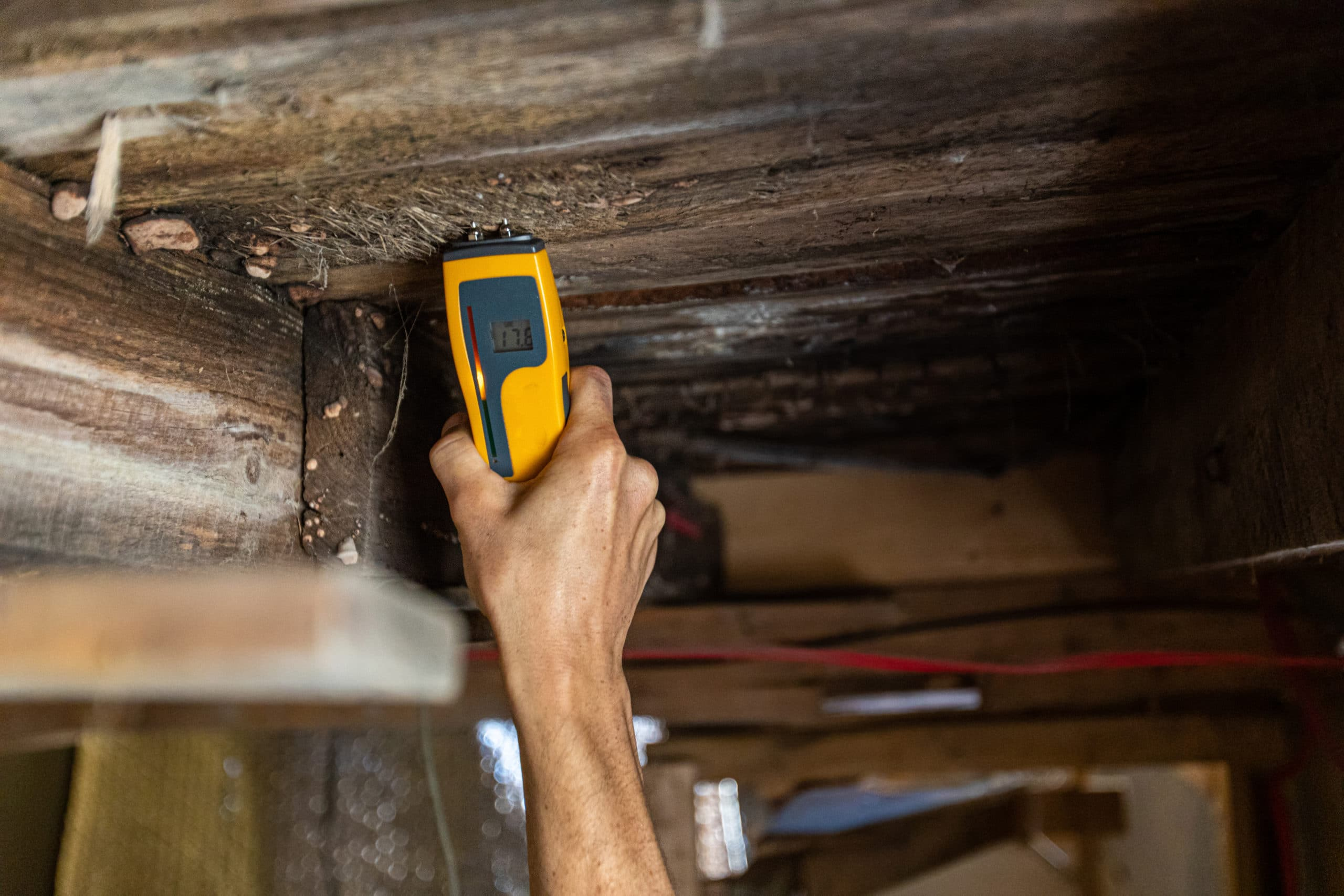 An environmental home inspector is viewed close-up at work, using an electronic moisture meter to detect signs of damp and rot in wooden structural elements.