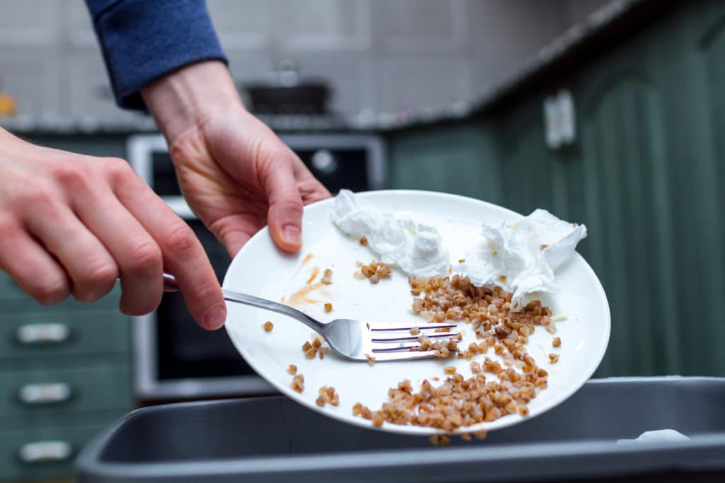 Someone throwing away leftover food from a plate to prevent mice